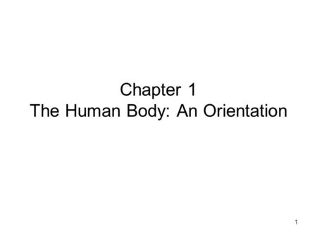 1 Chapter 1 The Human Body: An Orientation. 2 Anatomy – study of the structures and shape of the body Physiology – study of how the body and its parts.