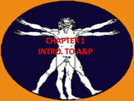 CHAPTER 1 INTRO. TO A&P. Intro to A&P Anatomy – Physiology – deals with functions & how body parts operate.