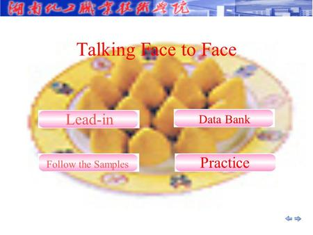 Talking Face to Face Practice Data Bank Lead-in Follow the Samples.