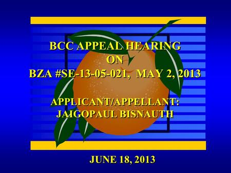 JUNE 18, 2013 BCC APPEAL HEARING ON BZA #SE-13-05-021, MAY 2, 2013 APPLICANT/APPELLANT: JAIGOPAUL BISNAUTH.