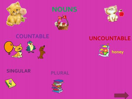 NOUNS COUNTABLE UNCOUNTABLE SINGULAR PLURAL honey.