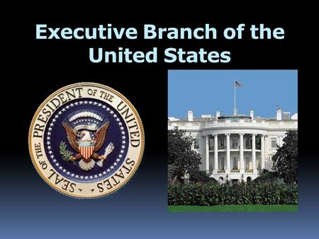 Executive Branch of the United States. The President  Leads Executive Branch  Head of State/Head of Government  Highest Political Official in the U.S.