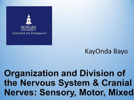 Organization and Division of the Nervous System & Cranial Nerves: Sensory, Motor, Mixed KayOnda Bayo.
