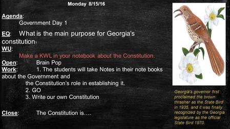 Monday 8/15/16 Agenda: (Write in agenda.) Get Syllabus signed. Government Day 1 EQ: What is the main purpose for Georgia's constitution ? WU: (Write answer.
