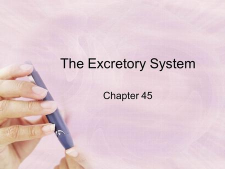 The Excretory System Chapter 45. An animal's nitrogenous wastes are related to its body type and habitat The metabolism of protein and nucleic acids produces.