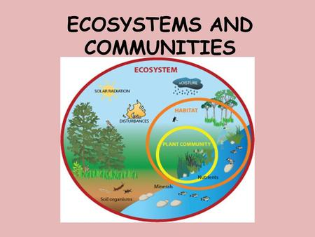 ECOSYSTEMS AND COMMUNITIES. Learning Goal: In this lesson we will learn about abiotic and biotic components of an ecosystem. We will also learn about.