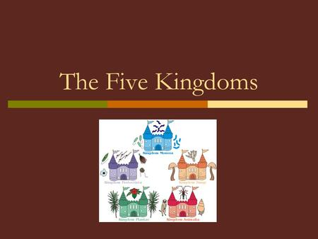 The Five Kingdoms.  Most modern scientists use the five kingdom system of classification.  Any system of classification is somewhat artificial.  It.