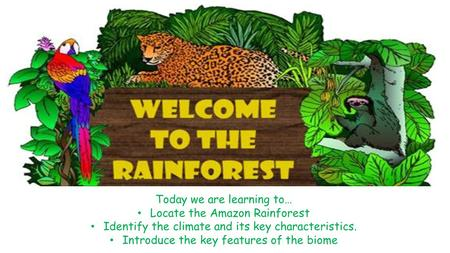 Today we are learning to… Locate the Amazon Rainforest Identify the climate and its key characteristics. Introduce the key features of the biome.