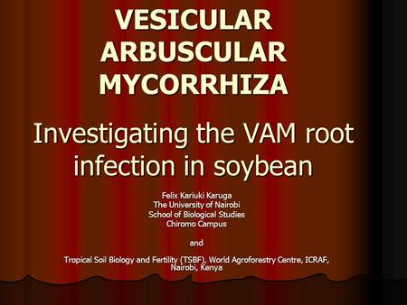 VESICULAR ARBUSCULAR MYCORRHIZA Investigating the VAM root infection in soybean Felix Kariuki Karuga The University of Nairobi School of Biological Studies.