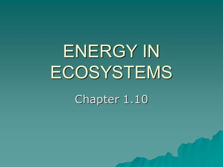 ENERGY IN ECOSYSTEMS Chapter 1.10. The sun is the source of all energy for the earth and its ecosystems. What happens to the suns energy? What is it used.
