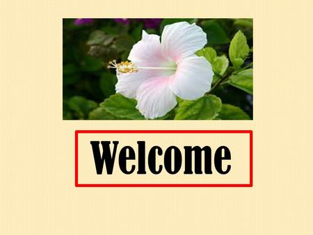 Welcome How are you students? Introduction: Name: Malay Ballav Assistant teacher (computer) B.D.C.H High School Muladi, Barisal. Mobile No: 01725671171.