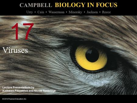 CAMPBELL BIOLOGY IN FOCUS © 2014 Pearson Education, Inc. Urry Cain Wasserman Minorsky Jackson Reece Lecture Presentations by Kathleen Fitzpatrick and Nicole.