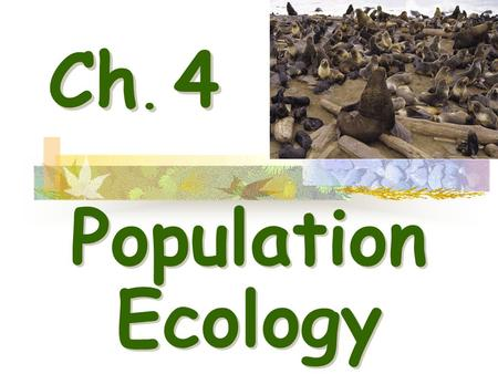 Ch. 4 Population Ecology. I.Population Dynamics - Biological processes constantly influence a population's density, dispersion, and growth rate. Tent.