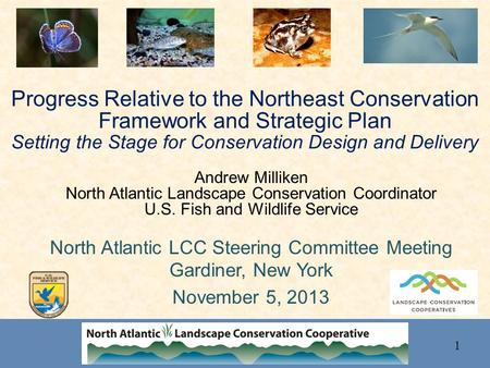 Progress Relative to the Northeast Conservation Framework and Strategic Plan Setting the Stage for Conservation Design and Delivery Andrew Milliken North.