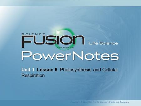 Unit 1 Lesson 6 Photosynthesis and Cellular Respiration Copyright © Houghton Mifflin Harcourt Publishing Company.