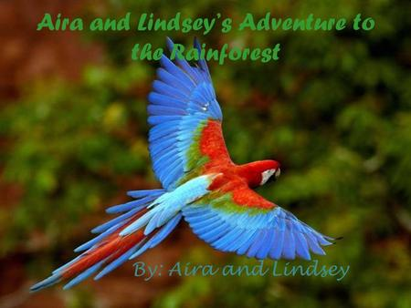 Aira and Lindsey's Adventure to the Rainforest By: Aira and Lindsey.