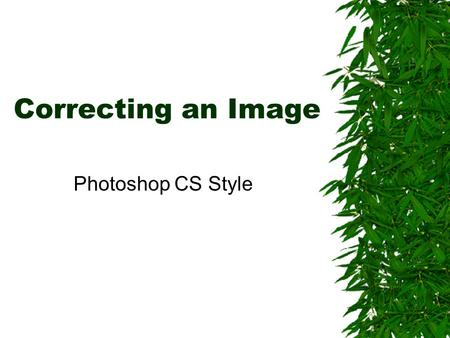 Correcting an Image Photoshop CS Style. Few images are ready to use directly from the camera. You will need to edit all photos (when applicable) before.