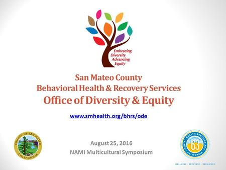 San Mateo County Behavioral Health & Recovery Services Office of Diversity & Equity August 25, 2016 NAMI Multicultural Symposium
