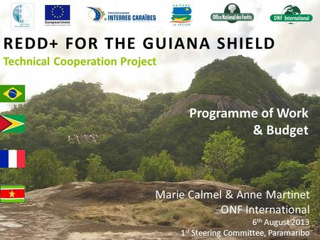 REDD+ FOR THE GUIANA SHIELD Technical Cooperation Project Programme of Work & Budget Marie Calmel & Anne Martinet ONF International 6 th August 2013 1.