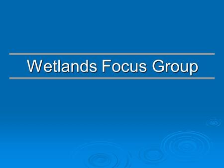 Wetlands Focus Group. Responsibilities and Goals   Growth Managements Act (Chapter 163, FS) of 1985   Included the adoption of the State Comprehensive.