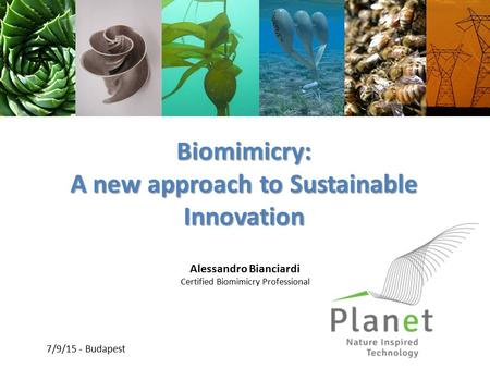 Biomimicry: A new approach to Sustainable Innovation Alessandro Bianciardi Certified Biomimicry Professional 7/9/15 - Budapest.