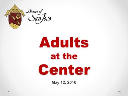 Adults at the Center May 12, 2016 1. 2 What parishes in the Diocese of San Jose are already doing: 83% spiritual prayer groups and scripture study 69%