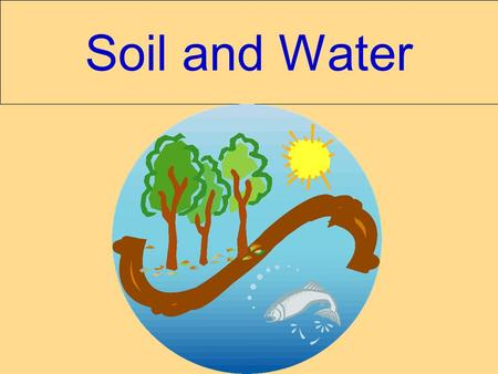 Soil and Water. Soil – an abiotic factor Soil quality is based on: 1. Soil profile / Horizons 2. Composition 3. Texture 4. Particle size 5. Permeability.