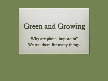 Green and Growing Why are plants important? We use them for many things!