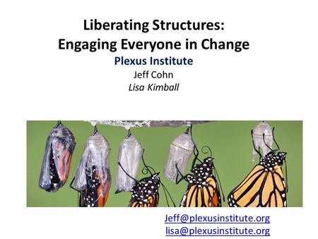 Liberating Structures: Engaging Everyone in Change Plexus Institute Jeff Cohn Lisa Kimball