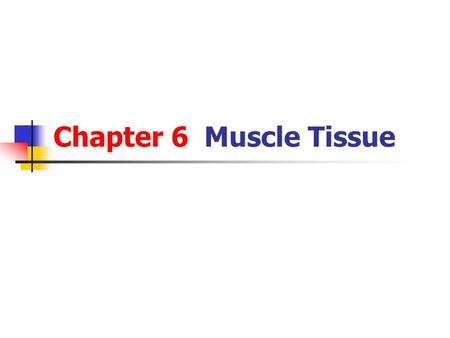 Chapter 6 Muscle Tissue. Overview of muscle tissue The myocytes is also called muscle fibers. The cytoplasm is called sarcoplasm, and the smooth endoplasmic.