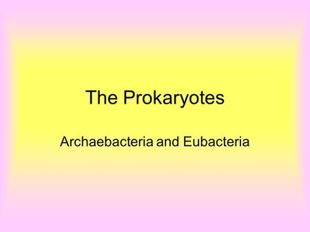 The Prokaryotes Archaebacteria and Eubacteria. Prokaryotes (bacteria) are split into two domains: –Archae: the extremists –Bacteria: the heterotrophs.