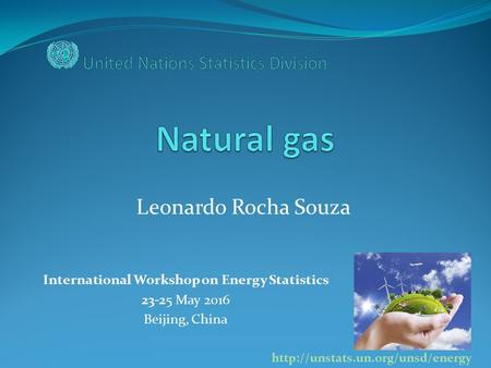 International Workshop on Energy Statistics 23-25 May 2016 Beijing, China  Leonardo Rocha Souza.