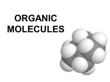 ORGANIC MOLECULES. What nutrients do you need? What does organic mean at the grocery store?