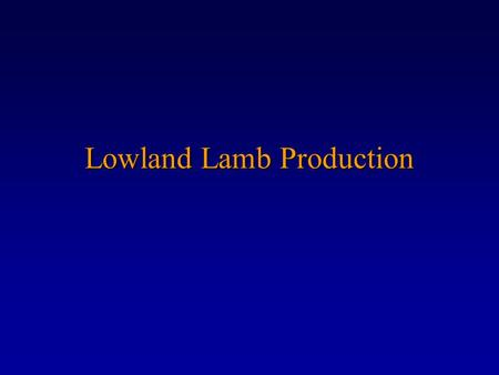 Lowland Lamb Production. Breeding Management  We are trying to produce as many fast growing good conformation lambs as possible.  We aim for 200 lambs.