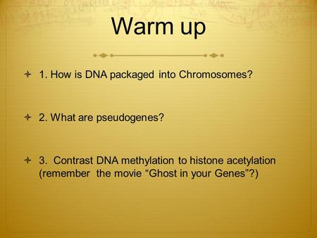 Warm up  1. How is DNA packaged into Chromosomes?  2. What are pseudogenes?  3. Contrast DNA methylation to histone acetylation (remember the movie.