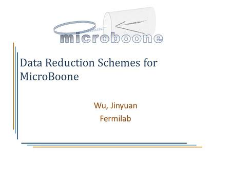 Data Reduction Schemes for MicroBoone Wu, Jinyuan Fermilab.