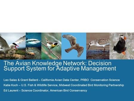1 The Avian Knowledge Network: Decision Support System for Adaptive Management Leo Salas & Grant Ballard – California Avian Data Center, PRBO Conservation.