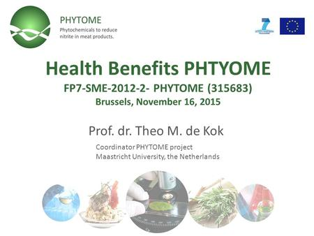 Health Benefits PHTYOME FP7-SME-2012-2- PHYTOME (315683) Brussels, November 16, 2015 Prof. dr. Theo M. de Kok Coordinator PHYTOME project Maastricht University,