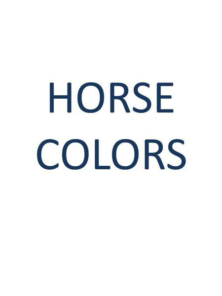 HORSE COLORS. BAY BLACK BROWN Black – all black with no brown at all. May fade in the sun. Bay – reddish-brown with black points – mane, tail, legs, ear.