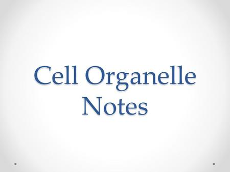 Cell Organelle Notes. Eukaryotic Cells There are two types of Eukaryotic Cells. They are animal and plant cells. Eukaryotic cells contain a nucleus and.
