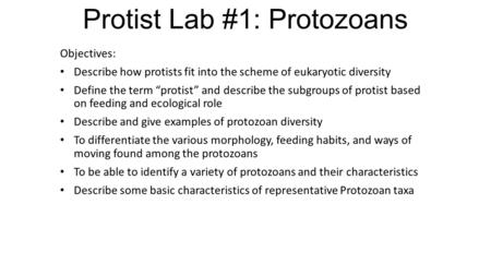 "Protist Lab #1: Protozoans Objectives: Describe how protists fit into the scheme of eukaryotic diversity Define the term ""protist"" and describe the subgroups."