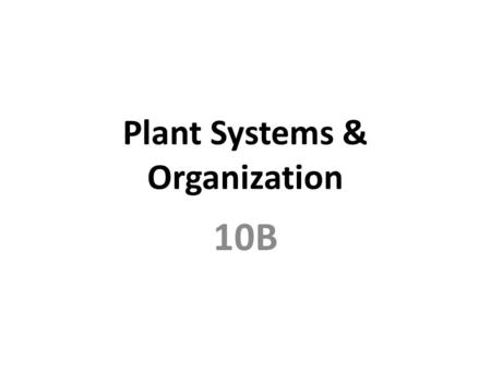 Plant Systems & Organization 10B. Specialized Cells Guard Cells Stomata.