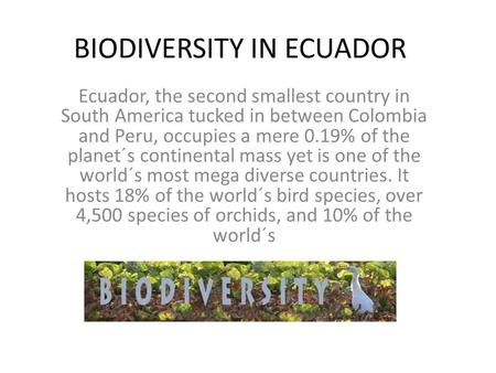 BIODIVERSITY IN ECUADOR Ecuador, the second smallest country in South America tucked in between Colombia and Peru, occupies a mere 0.19% of the planet´s.
