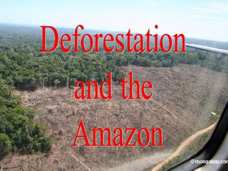 Location of Amazon The majority of the forest is in Brazil, with 60% of the rainforest, followed by Peru with 13%, Colombia with 10%, and with minor amounts.