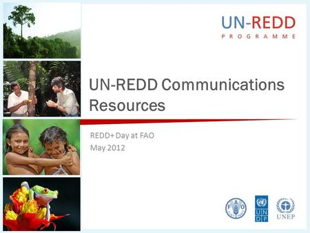 UN-REDD Communications Resources REDD+ Day at FAO May 2012.