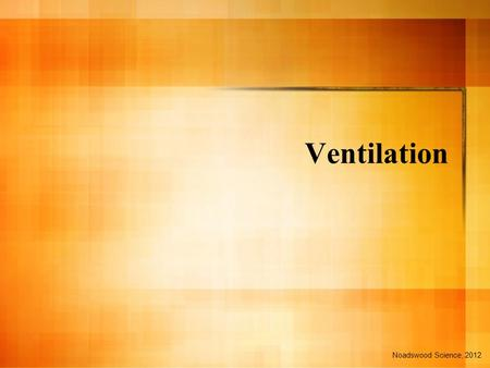 Ventilation Noadswood Science, 2012. Ventilation To know how ventilation takes place in the body Sunday, October 02, 2016.