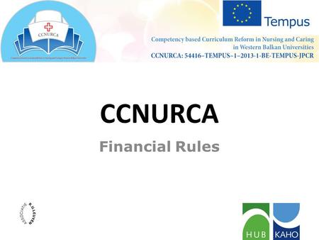 Financial Rules CCNURCA. CONTENT Budget and contractual ceilings Budget headings Co-financing Rule of origin Exchange rate.