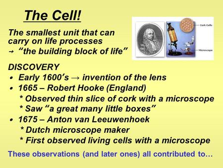 "The Cell! The smallest unit that can carry on life processes → ""the building block of life"" DISCOVERY ∙ Early 1600's → invention of the lens ∙ 1665 – Robert."