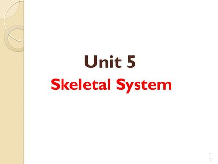 Unit 5 Skeletal System 7 - 1. Introduction: A.Bones are very active tissues B.Each bone is made up of several types of tissues which makes it an organ.