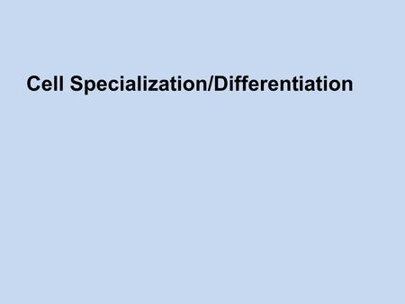 Cell Specialization/Differentiation. Specialized Cells/ Cell Differentiation  Multicellular organisms contain a wide range of different cells.  Every.